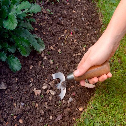Toprak ve Bitki Bakımı